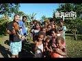 石头焖鸡味道太香,出锅就被秒光   Laplap style chicken and Chinese fry rice show in Imailone village ,Tanna ,Vanuatu