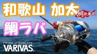 釣友のボートに乗せてもらい、加太の沖で鯛ラバゲームをしました。ボク自身、鯛ラバは2回目の釣行でしたが、友人のおかげでまぁまぁなサイズを釣る事ができました。ヤマシタ 鯛歌舞楽セット http://amzn.to/2mcRdiiバリバス ハイグレードPE X8 http://amzn.to/2mBTyPaバリバス ショックリーダー 16LB フロロ http://amzn.to/2mZ19Lbロッドは4000円チョットで購入できたメジャークラフトのコルザ CZC-66M 70%オフ(笑) https://www.naturum.co.jp/item/item.asp?item=2639394&buddy=0001082689152