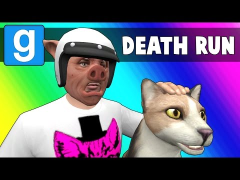 Gmod Deathrun Funny Moments - CAT FIGHT! (Garry's Mod) (видео)