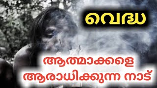 Video ആത്മാക്കളെ ആരാധിക്കുന്ന നാട് | Churulazhiyatha Rahasyangal | ghost caught in CCTV | tribal MP3, 3GP, MP4, WEBM, AVI, FLV Maret 2019
