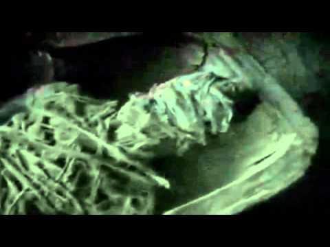 lo sconvolgente mistero della mummia aliena