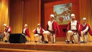 Vallja E Sharrit (Diaspora Strugane)