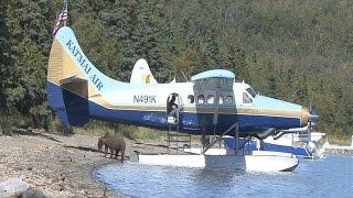 Video Journey to the Bears at Brooks River in Alaska MP3, 3GP, MP4, WEBM, AVI, FLV Oktober 2017