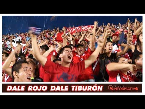 Tiburones Rojos (Porra) Dale Rojo Dale Tiburón - Guardia Roja - Tiburones Rojos de Veracruz