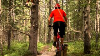 Hinton (AB) Canada  City new picture : Mountain Biking in Hinton - Travel Alberta, Canada
