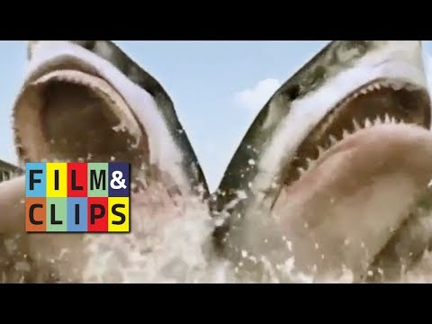 Carnage Count - Clip from 5 Headed Shark Attack (2017) by Film&Clips