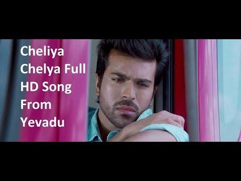 Cheliya Cheliya Full HD Song From Yevadu || Ram Charan, Allu Arjun, Sruthi Hasan