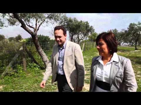 Campaña Elecciones Municipales 2011