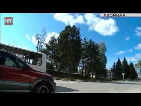 Дороги Новгородчины: поселок Хвойная