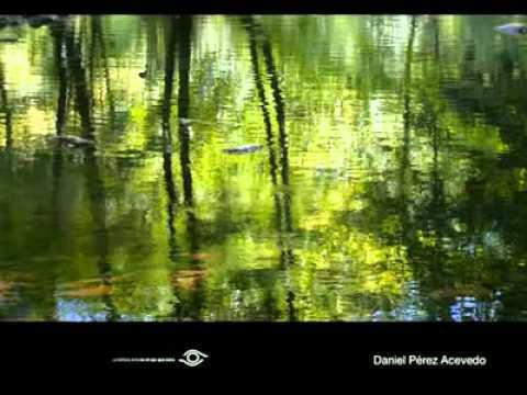 video resumen I concurso de foto medio ambiente de La Rioja