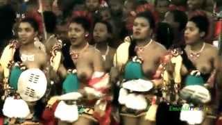 Video African Princesses _5      (vid# 5_720p) MP3, 3GP, MP4, WEBM, AVI, FLV Juli 2018