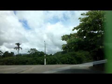 Gasolina em floresta azul ba
