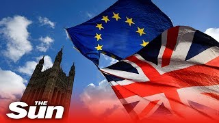 MPs vote on No Deal Brexit | 13.03.19 Live replay (part 2)