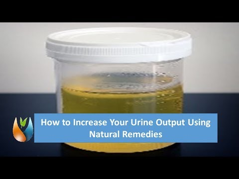 How to Increase Your Urine Output Using Natural Remedies