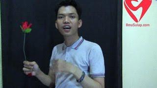 Video Trik Sulap Gratis - Tisu Jadi Bunga Mawar (Romantis) MP3, 3GP, MP4, WEBM, AVI, FLV Oktober 2018