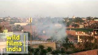 Aligarh India  city photo : View of Aligarh city, Uttar Pradesh