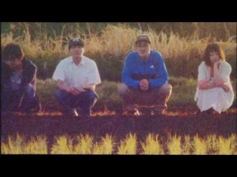 「夕暮れの鳥」Music Video