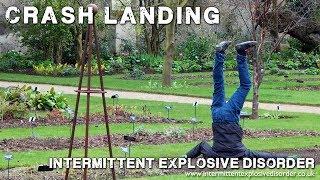 Crash Landing thumb image