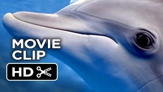 Dolphin Tale 2 Movie CLIP - What Are You Doing? (2014) - Morgan Freeman Dolphin Drama HD