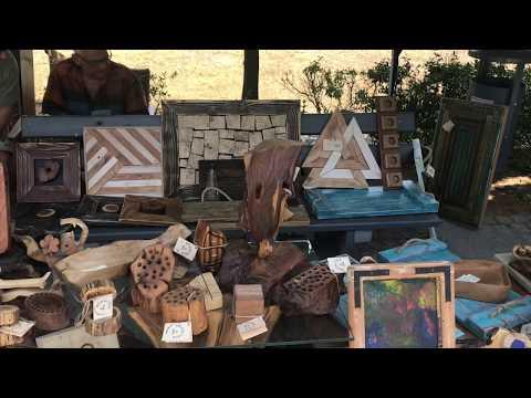 Wideo1: Festiwal SAMOSIę w Parku Jonstona