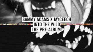 Thumbnail for Sam Adams — Big Lights (Into the Wild)