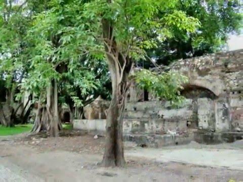 La hacienda el puig videos videos relacionados con la for Jardines la hacienda el puig
