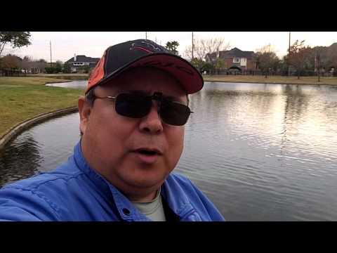 Catfishing in Katy TX