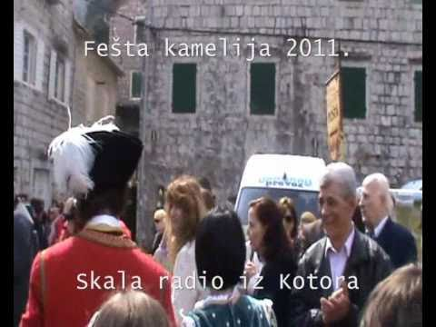 Skala radio - Fešta kamelija u Stolivu 27.03.2011.