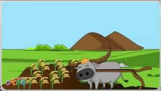 สื่อการเรียนการสอน ประโยชน์ของสัตว์ ป.1 วิทยาศาสตร์