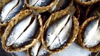 Walk Around Ho Chi Minh City Saigon Street Market Food Fish Seafood Vietnam - Phil In Bangkok