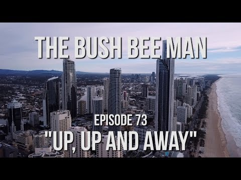 "Australian Bee Congress - Interview with David Hackenberg - Episode 73: ""Up… видео"