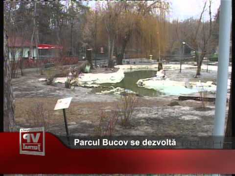 Parcul Bucov se dezvoltă