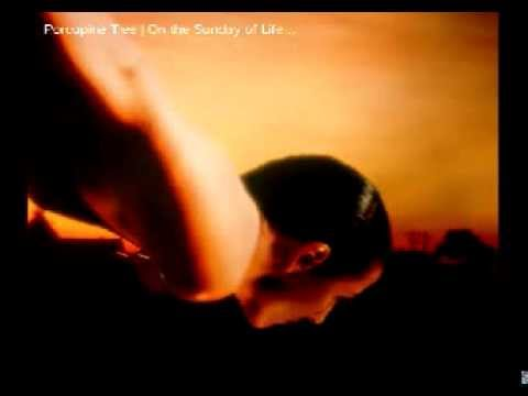 Porcupine Tree - Jupiter Island lyrics