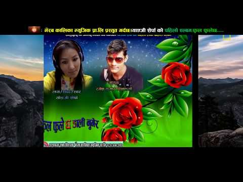 फुल फुलेछ डाली नुगेर|new nepali lok dohori geet|2074|2017|by Ramesh kumar bishwakarma&yanji sherpa