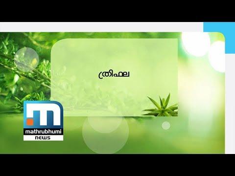 Medicinal Benefits Of Triphala| Mathrubhumi News