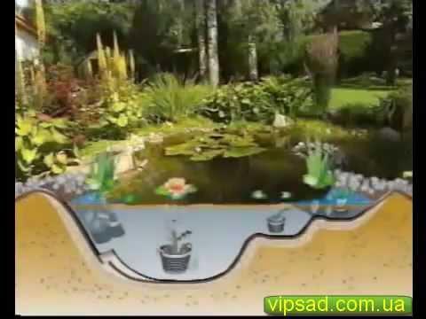 Пруд из пленки видео