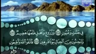 المصحف المرتل 19 للشيخ محمد صديق المنشاوي رحمه الله HD