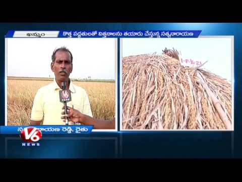 Innovative Cultivation | Farmer Invents 30 Kinds Of Rice Strains | Khammam | V6 News