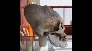 Paracas Peru  City new picture : Newly Discovered Elongated Skulls In Paracas Peru