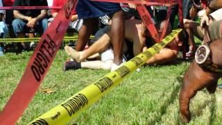 COLOMBIAN NINJA BAREKNUCKLE FIGHT IN PERRINE MIAMI
