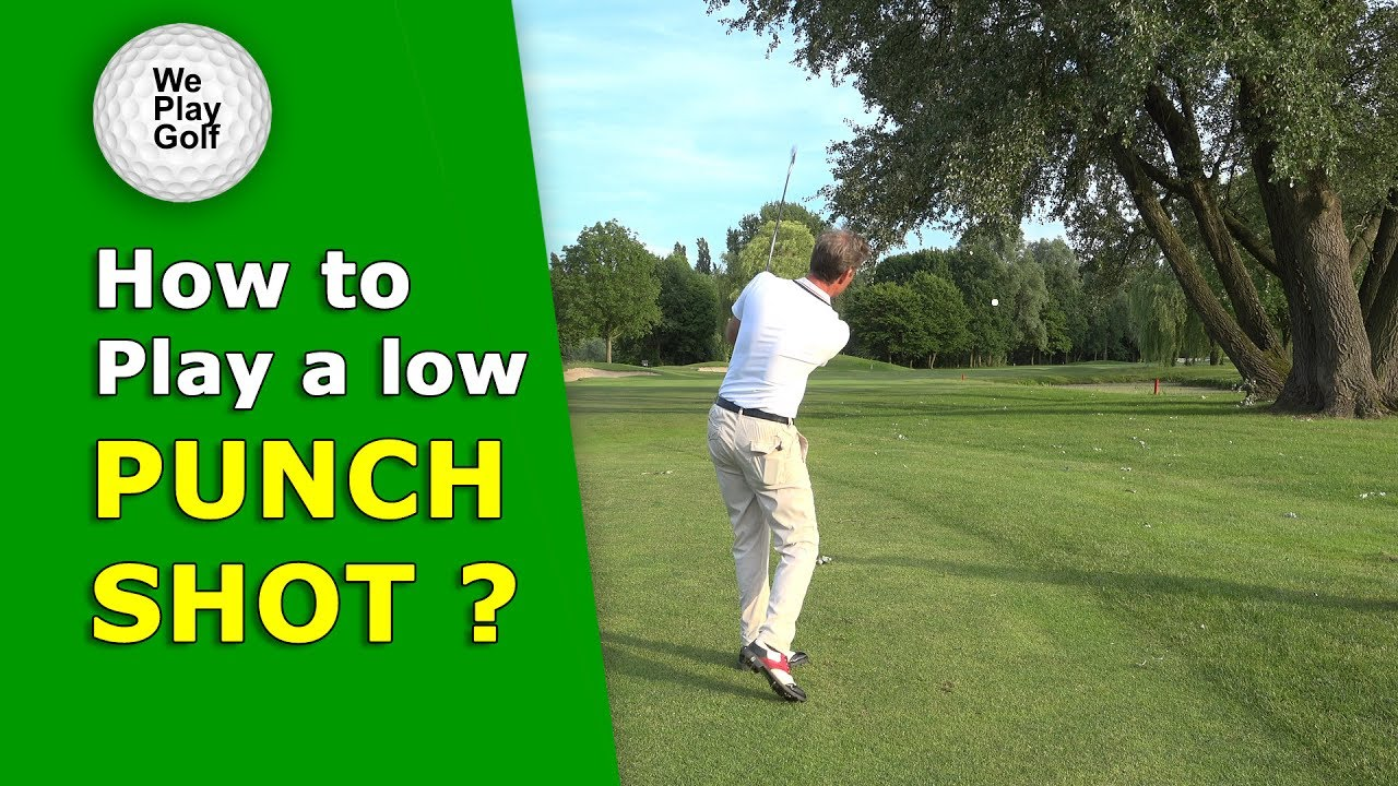 How to play a low Punch shot under a tree?