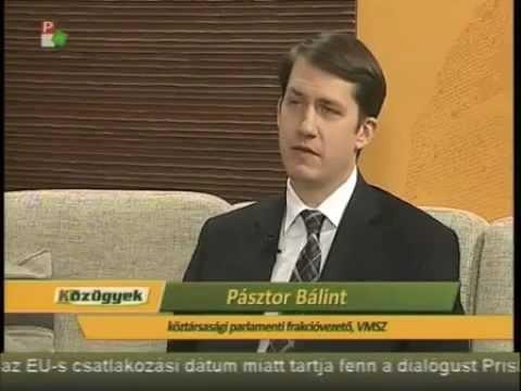 Közügyek - Pásztor Bálint (Zéró tolerancia)-cover
