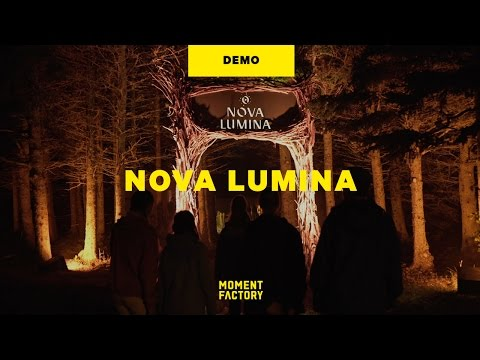 Nova Lumina: A Night Walk by the Sea