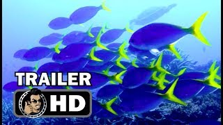 Nonton CHASING CORAL Official Trailer (HD) Netflix Original Documentary Film Subtitle Indonesia Streaming Movie Download