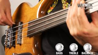 The Pro Series Thumb BO 4-String Fretted and Fretless - with Andy Irvine