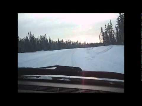 Des dizaines de caribous croisés sur la Route du Nord