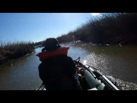 Exploring the Suisun Marsh