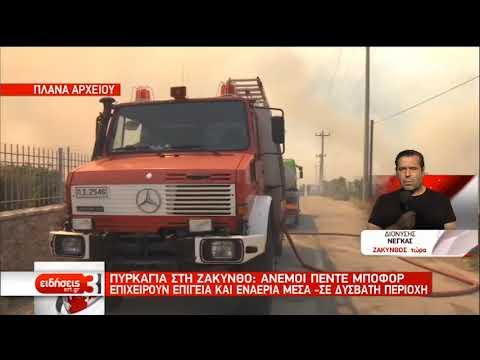 Πυρκαγιά στη Ζάκυνθο- Άνεμοι 5 Μποφόρ | 15/08/2019 | ΕΡΤ