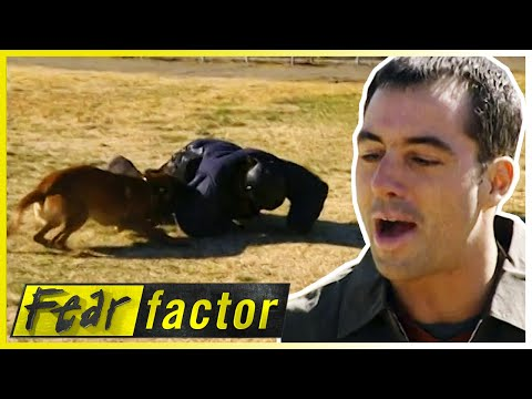 MAULED by Attack Dogs! 🐕| Fear Factor US | S01 E05 | Full Episodes | Thrill Zone