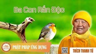 Ba Con Rắn Độc - Thầy Thích Thanh Từ